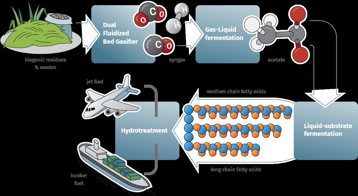 Biosfera - Biofuel for Biotravel